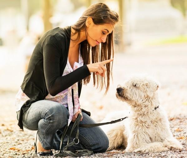 CBD American Shaman DeZavala Woman with Dog